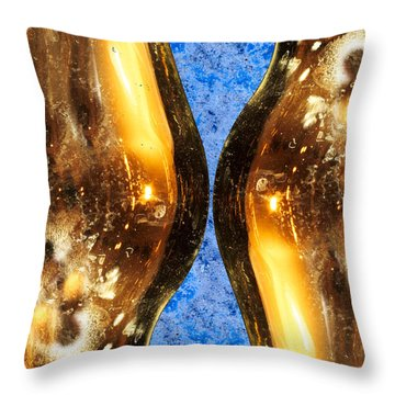 Vertical Independence Throw Pillow by Don Gradner
