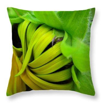 Very Shy Sunflower Throw Pillow