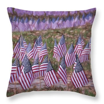 Veterans Day Display Color Throw Pillow