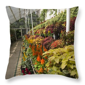 Vibrant Life Palm House Ireland Throw Pillow