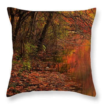 Vibrant Reflection Throw Pillow