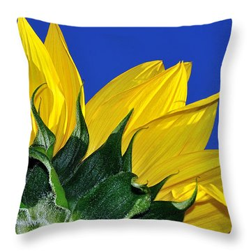 Vibrant Sunflower In The Sky Throw Pillow by Kaye Menner