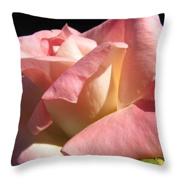 Throw Pillow featuring the photograph Victorian Beauty by Jennifer Wheatley Wolf