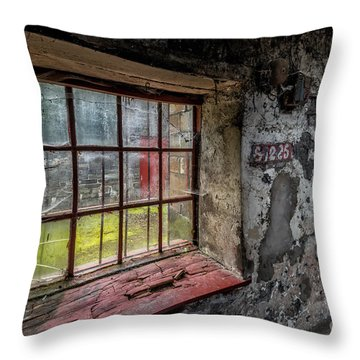 Victorian Decay Throw Pillow by Adrian Evans