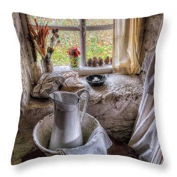 Victorian Wash Area Throw Pillow