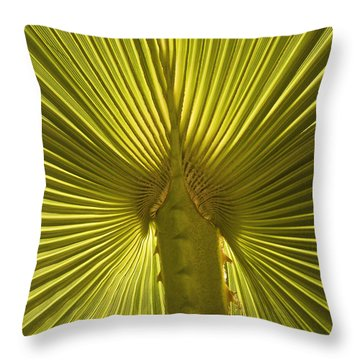 Victory Throw Pillow by Sherri Meyer