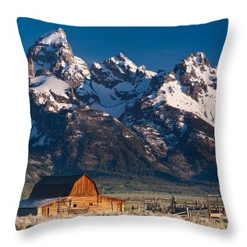 View At John Moulton Barn Throw Pillow