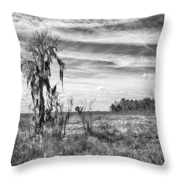 Throw Pillow featuring the photograph View For The Levy by Howard Salmon