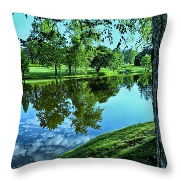 View From Accross The Lake Throw Pillow