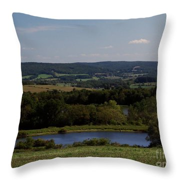 View From Amenia Throw Pillow