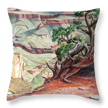 View From Cedar Ridge Trail Throw Pillow