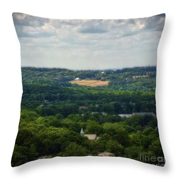 Throw Pillow featuring the photograph View From Goat Hill by Debra Fedchin