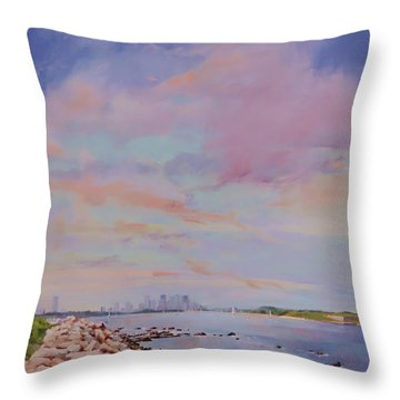 View From Hull Throw Pillow
