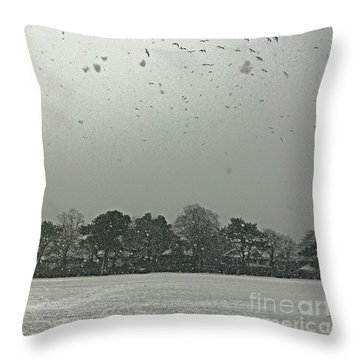 View From My Home Right Now.  Seagulls Throw Pillow