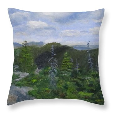 View From Noon Peak Throw Pillow