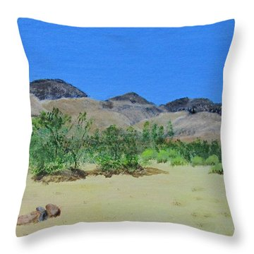 View From Sharon's House - Mojave Throw Pillow