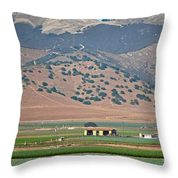 Throw Pillow featuring the photograph View From The Crops by Susan Wiedmann