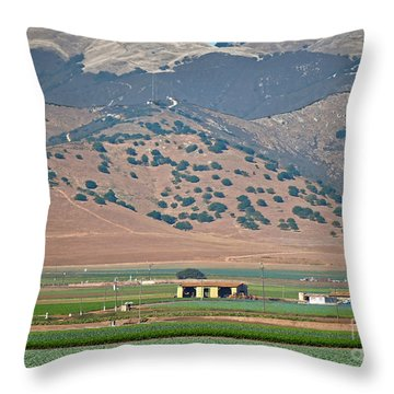 View From The Crops Throw Pillow