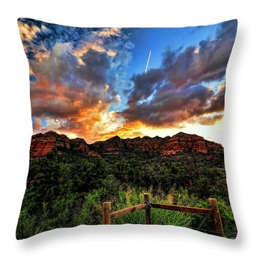 View From The Fence  Throw Pillow