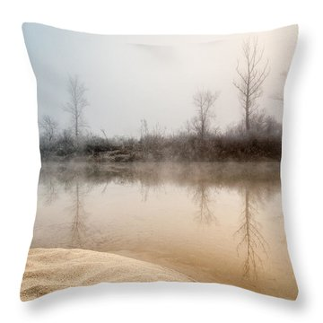 View From The Golden Coast Throw Pillow by Davorin Mance