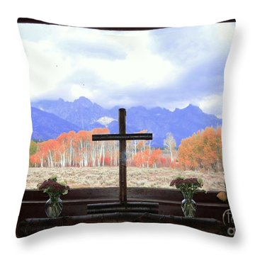 View From The Inside Throw Pillow by Kathleen Struckle