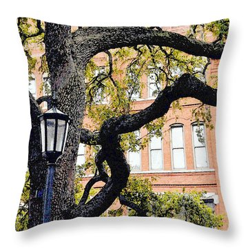 View From The Square Throw Pillow