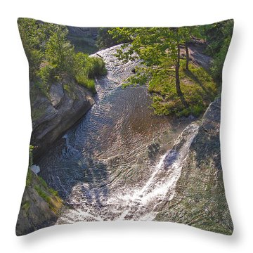 View In Color Throw Pillow