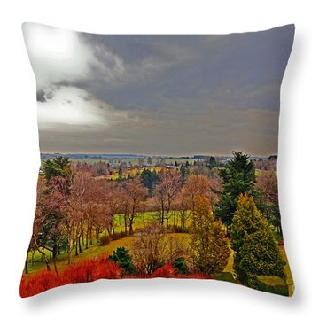 View Of Belgium Throw Pillow