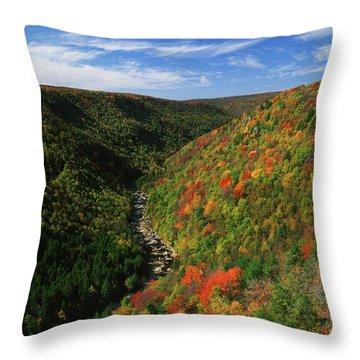 Blackwater Throw Pillows