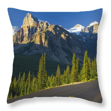 View Of Glacial Mountains And Trees Throw Pillow by Laura Ciapponi