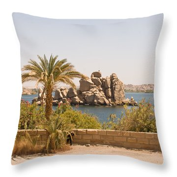 View Of Lake Throw Pillow