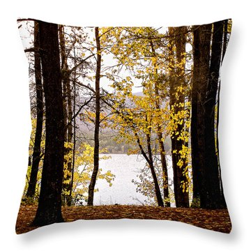 View Of  Lake Mcdonald Throw Pillow