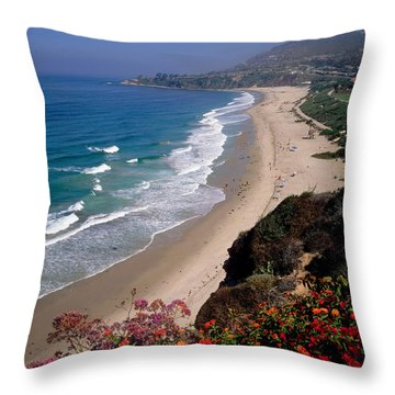 View Of Salt Creek Beach Throw Pillow