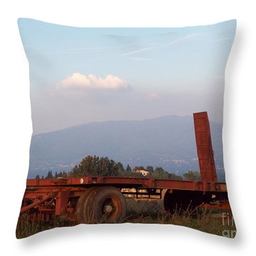 View On Vallombrosa Throw Pillow