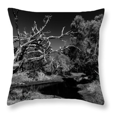View Over North Lake Throw Pillow