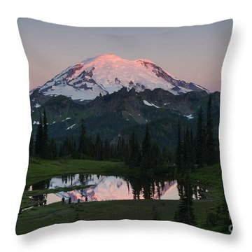 View To Be Shared Throw Pillow