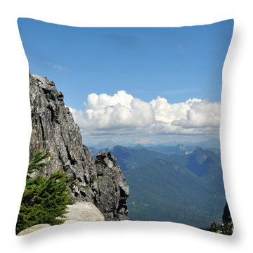 Throw Pillow featuring the photograph Views For Pilchuck by Rebecca Parker