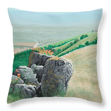 Views From Canada De Los Osos #1 Throw Pillow