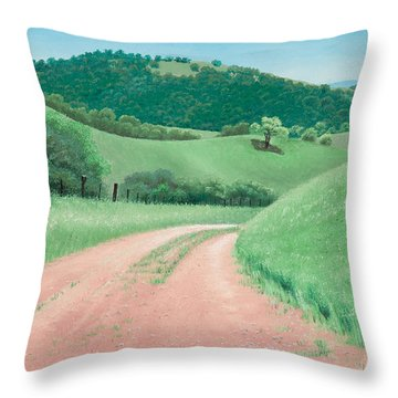 Views From Canada De Los Osos #2 Throw Pillow