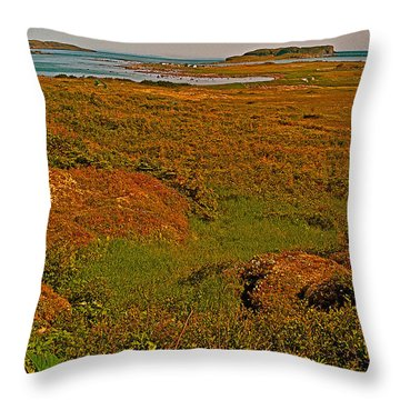 Viking Landing Point At L'anse Aux Meadows-nl Throw Pillow