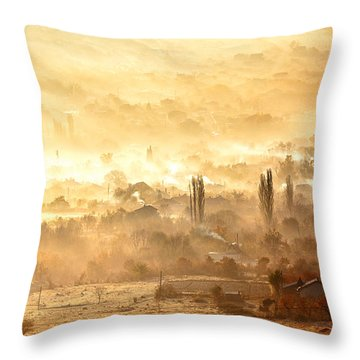 Village Of Gold Throw Pillow by Evgeni Dinev