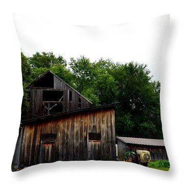 Village Winery Throw Pillow