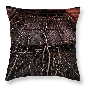 Vine Of Decay 1 Throw Pillow by Amy Cicconi