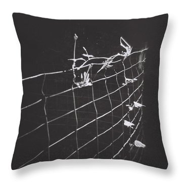 Vine On A Fence Throw Pillow
