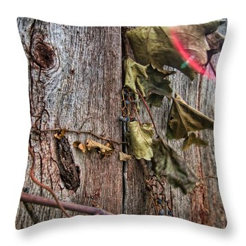 Throw Pillow featuring the photograph Vines And Barns by Daniel Sheldon