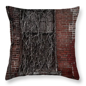 Vines Of Decay Throw Pillow by Amy Cicconi