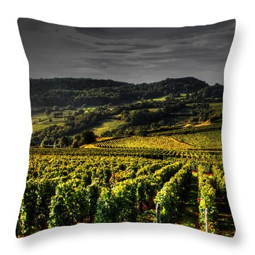 Vines In France Throw Pillow