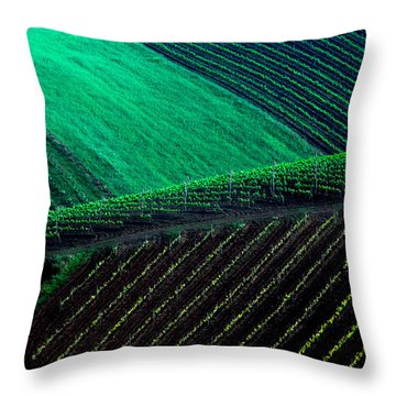 Vineyard 05 Throw Pillow