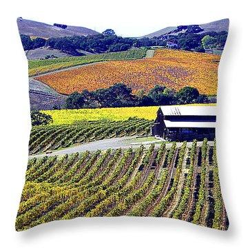 Vineyard 35 Throw Pillow by Xueling Zou