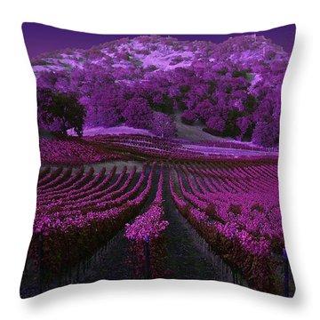 Vineyard 41 Throw Pillow